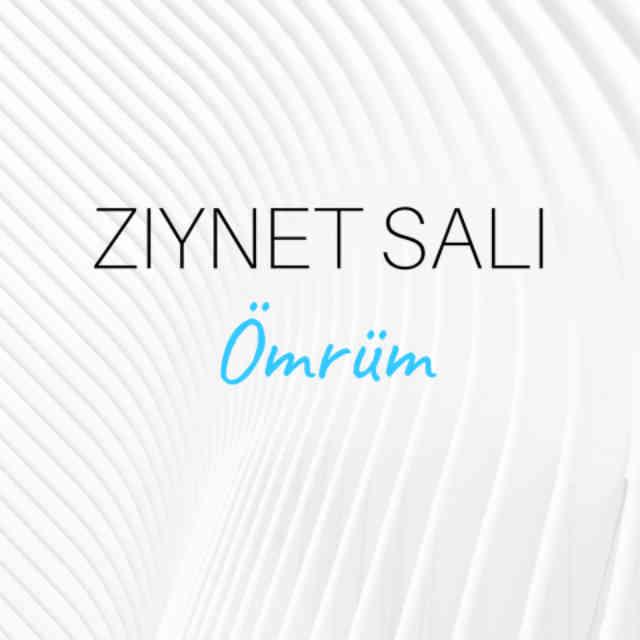 دانلود آهنگ Ziynet Sali به نام Ömrüm