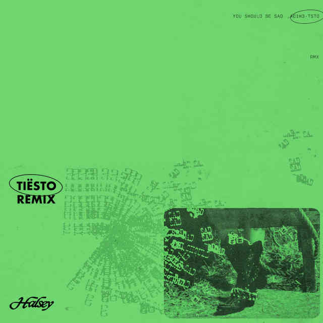 دانلود آهنگ Halsey به نام You should be sad (Tiësto Remix)