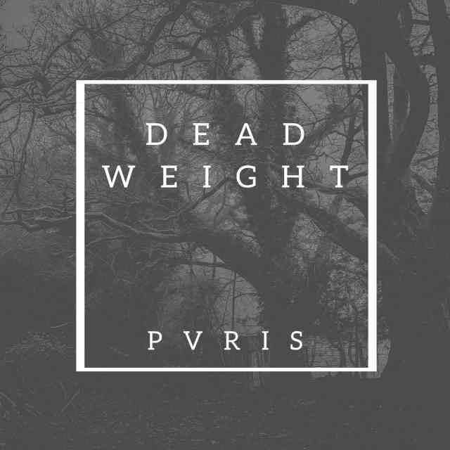 دانلود آهنگ PVRIS به نام Dead Weight
