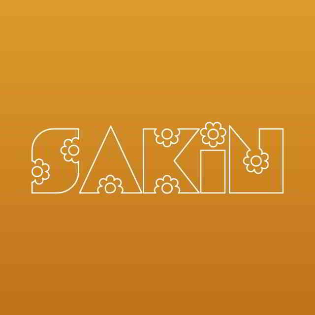 دانلود آهنگ Elanur به نام Sakin