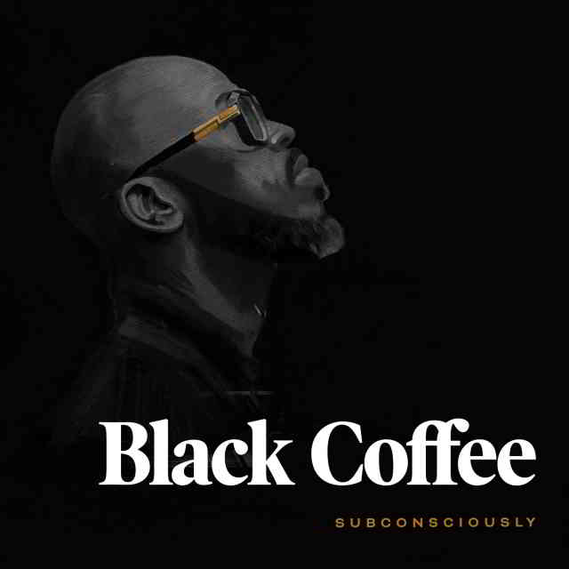 دانلود آهنگ Black Coffee & Diplo به نام Never Gonna Forget