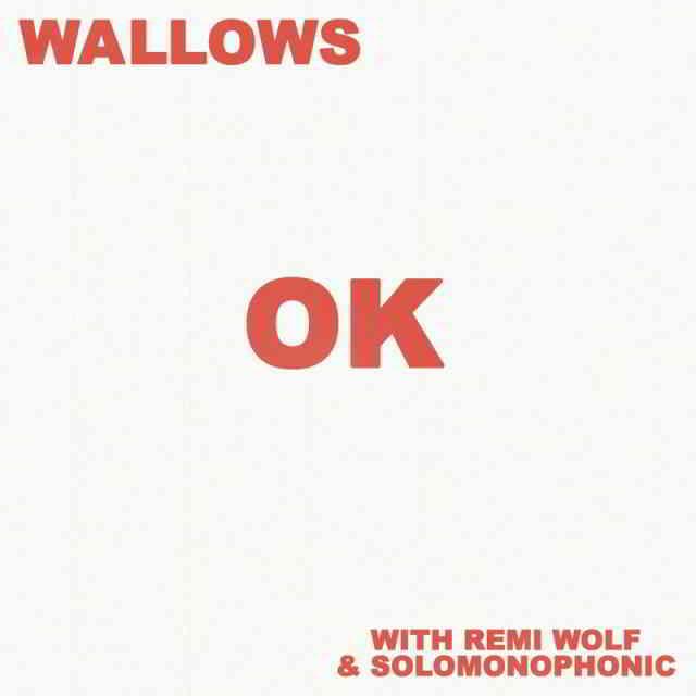 دانلود آهنگ Wallows ft. Remi Wolf & Solomonophonic به نام OK